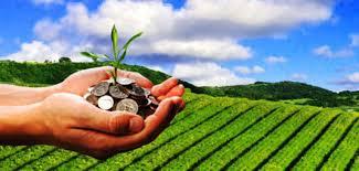 कृषि परियोजनाको क्षेत्रमा राष्ट्रिय सहकारी बैंकले लगानी नगर्ने